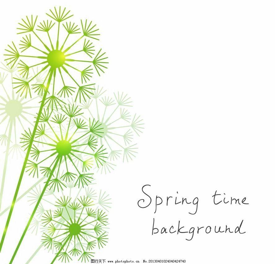 春天蒲公英背景图片