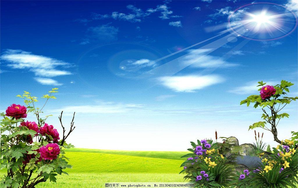 蓝天白云花背景 蓝天 白云 草 花 花草 云 天 太阳光 太阳 光 草地