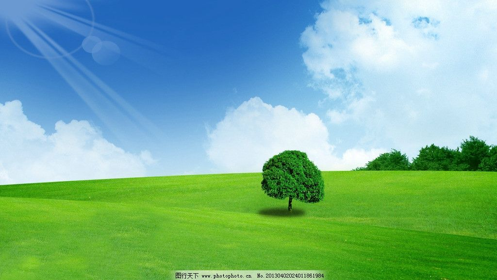 蓝天白云 大树 蓝天 白云