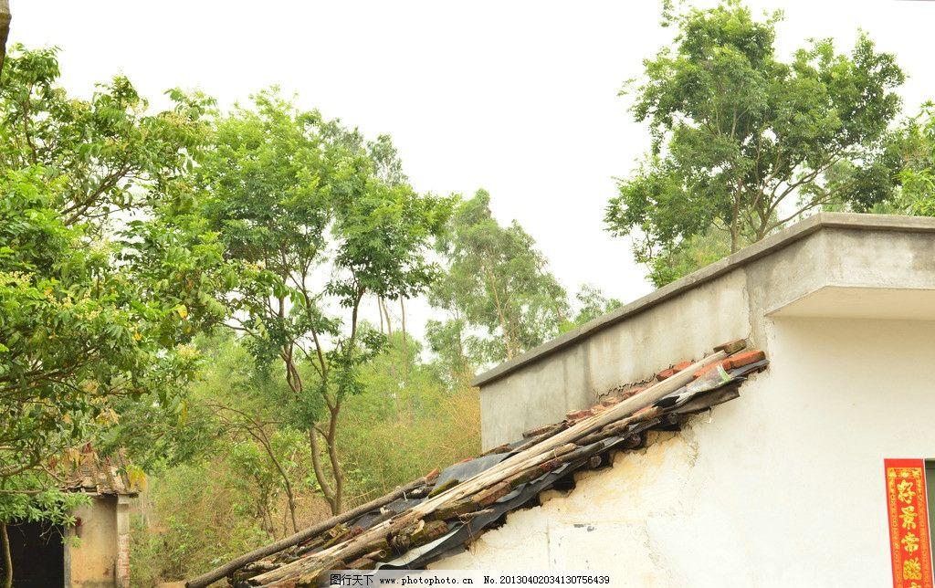 农村景色 绿树 山村 村庄 农家 绿色 树木 树林 旅游摄影 自然风景