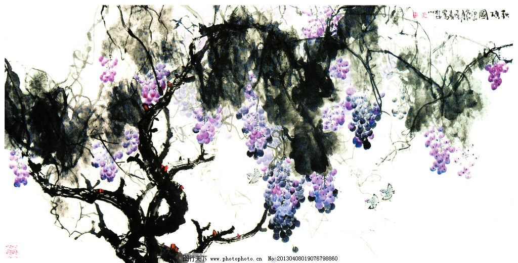 葡萄水彩画 秋硕图 葡萄 紫葡萄 葡萄树 葡萄园 葡萄国画 水彩葡萄