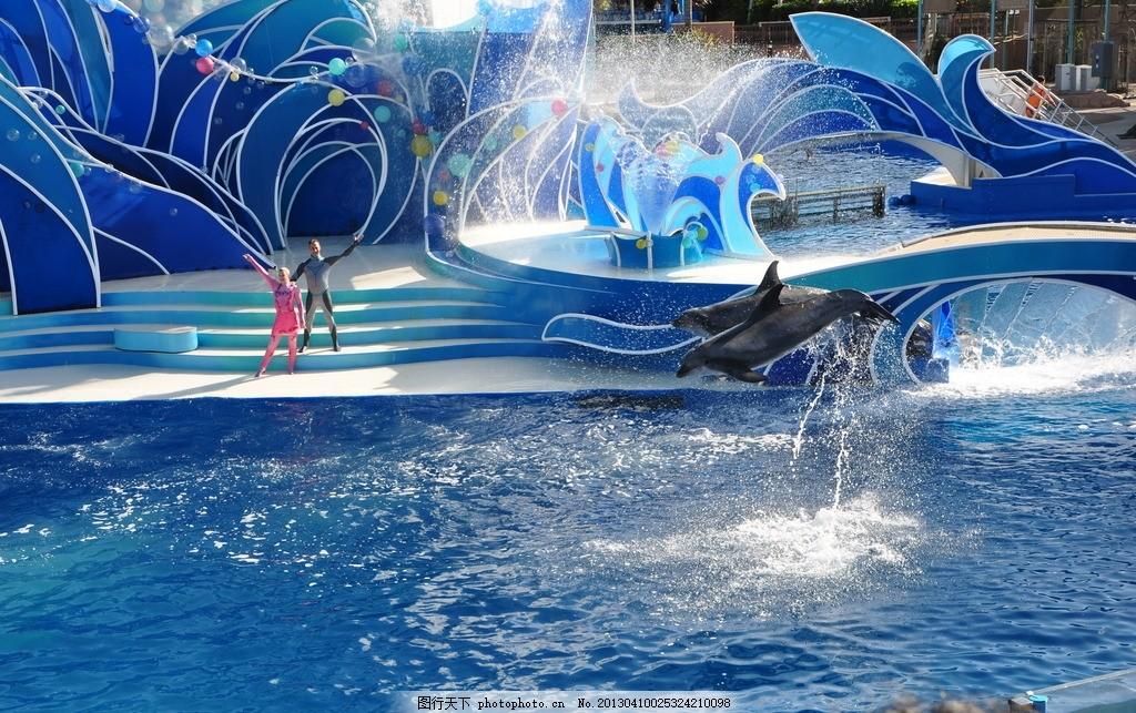 水 蓝色 蓝色建筑 表演台 天空 人 海豚 表演 水花 动物 海洋生物