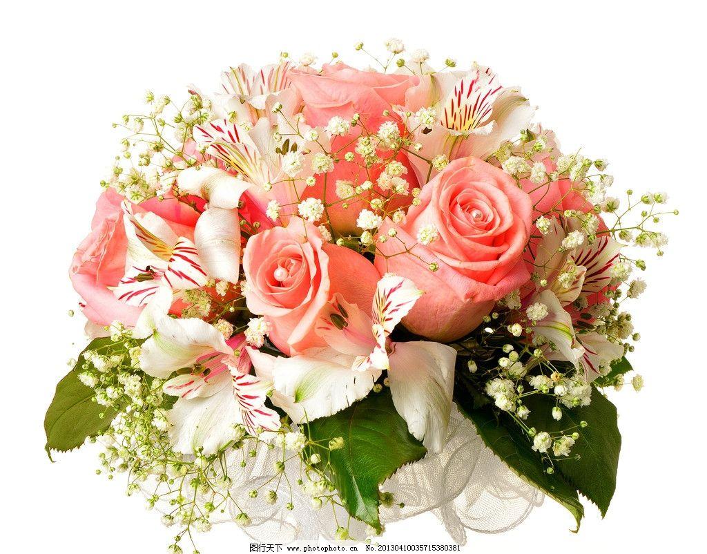 玫瑰 手捧花图片