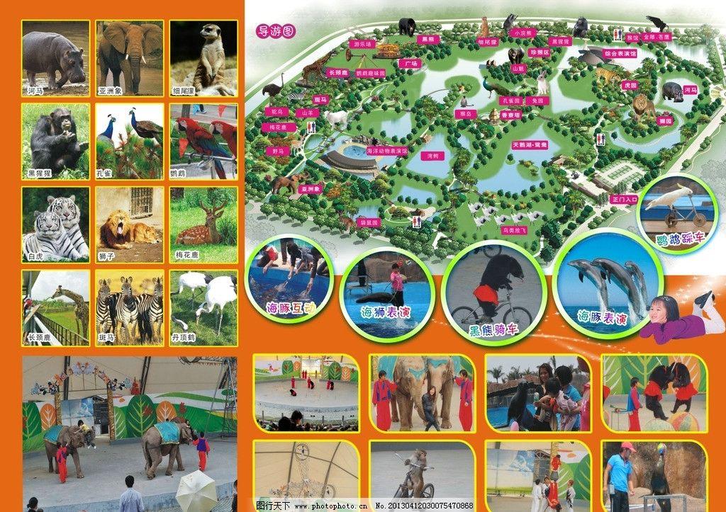 动物园 动物园画册图片