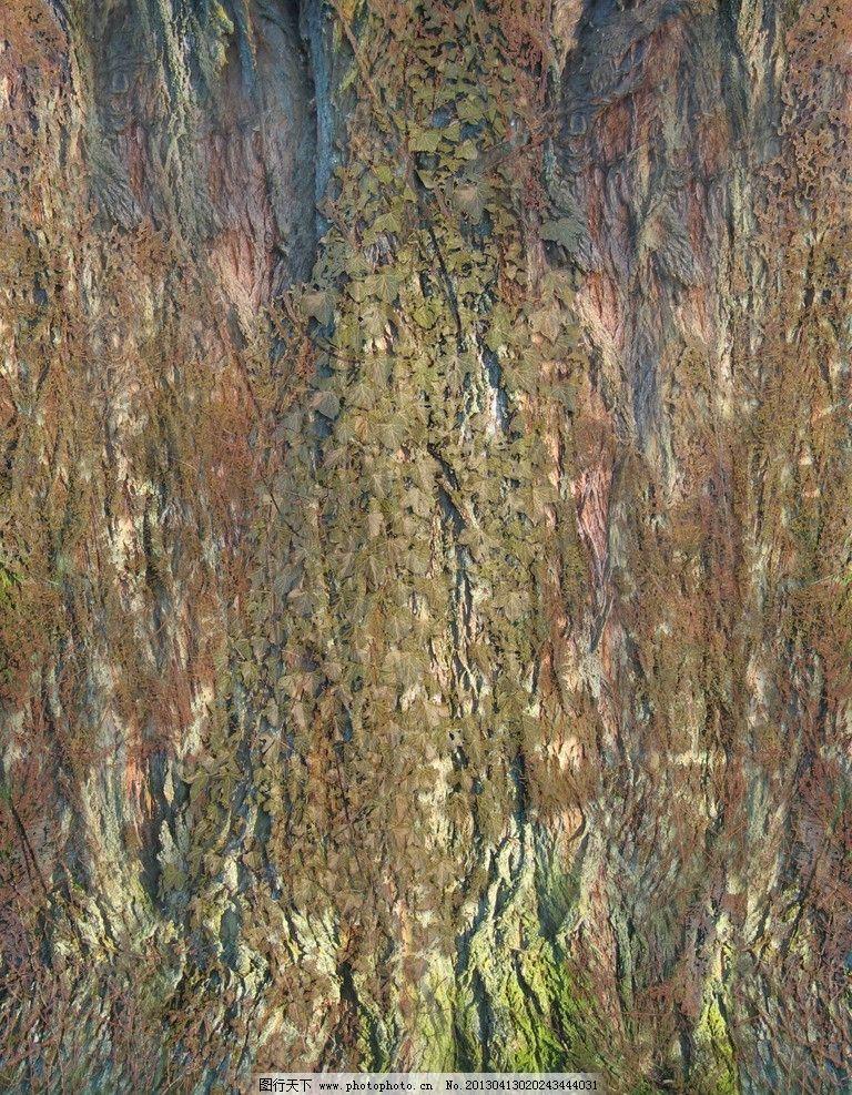 树皮 贴图图片