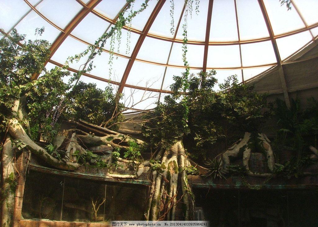 南昌新动物园图片