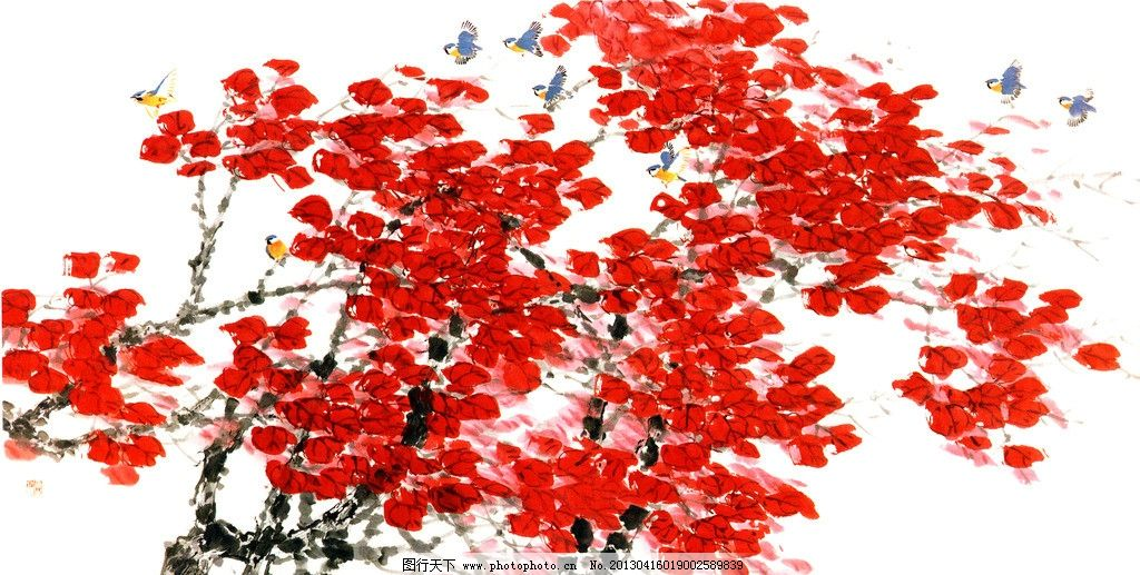香山红叶图片图片