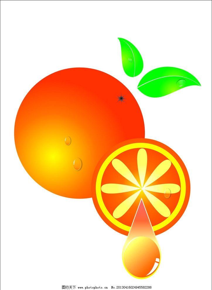 手绘橙子 水滴图片
