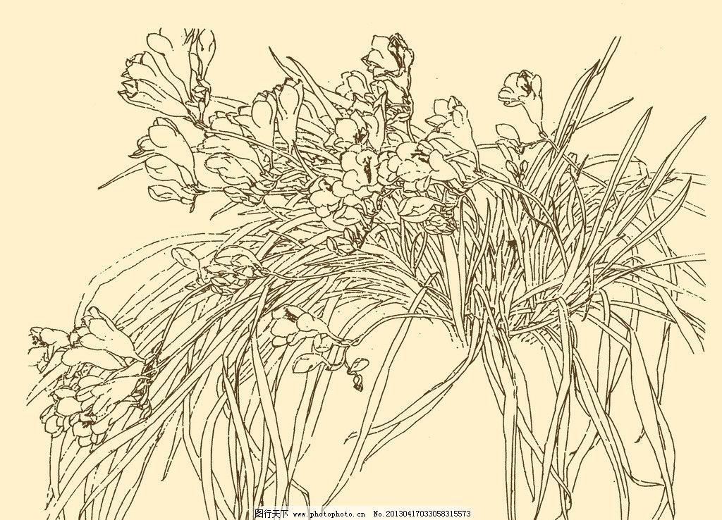 勾线笔花卉手绘
