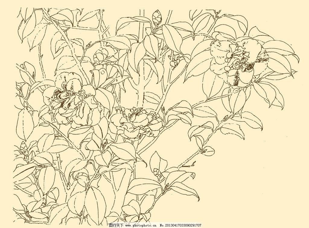 白描花卉 白描 花卉 线描 线画 线稿 中国画 国画 花瓶 psd分层素材