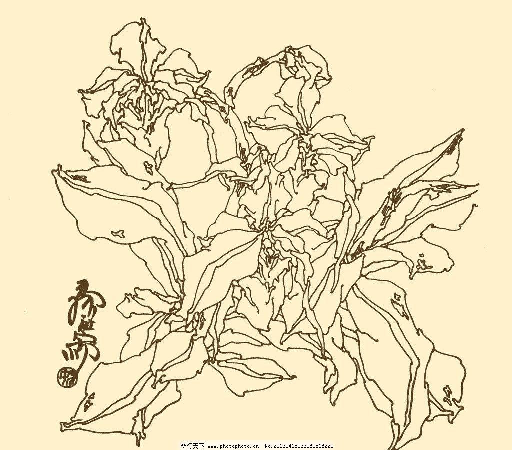 白描花卉 白描 花卉 线描 线画 线稿 中国画 国画 花草 psd分层素材