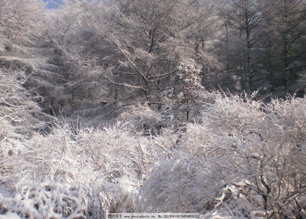 崂山 冬季 雪景 青岛户外 崂山冬季 自然风景 自然景观 摄影 314dpi