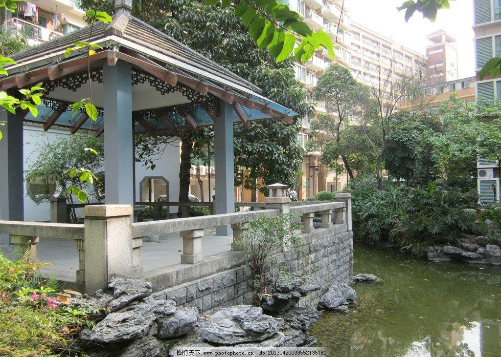 院子 凉亭 池水 夏天 假山 园林建筑 建筑园林 摄影