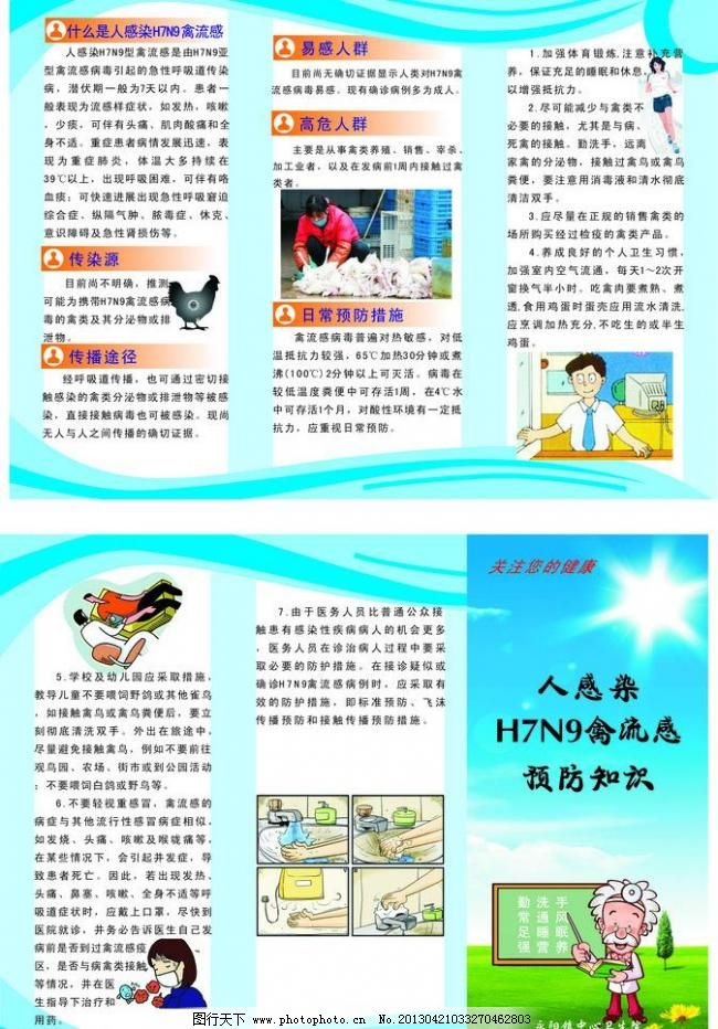 h7n9禽流感三折页 预防知识 疾控 矢量