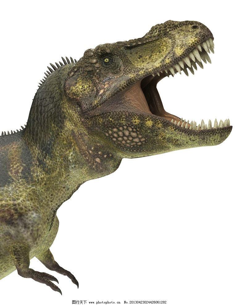 恐龙 暴龙 动物 牙齿 侏罗纪