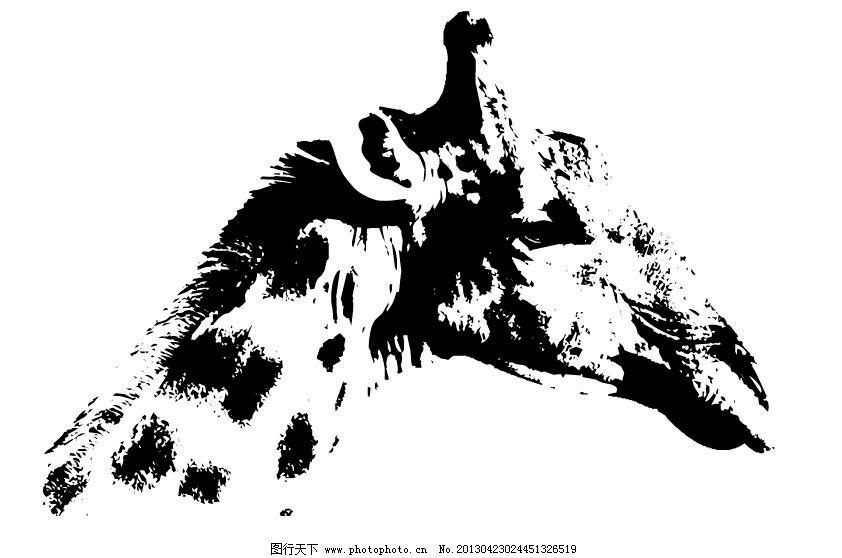 长颈鹿剪影 剪影 动物剪影 哺乳动物 鹿 野生动物 保护动物 可爱动物