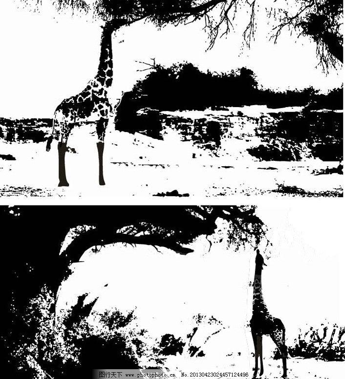 哺乳动物 动画设计 珍禽 野生动物 自然 大自然 黑白画 保护动物 动物