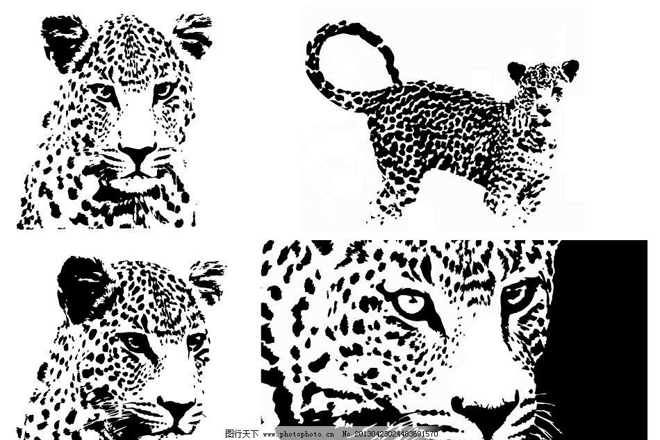 豹头 豹子 豹子剪影 动物 动物剪影 哺乳动物 黑白画 生猛动物