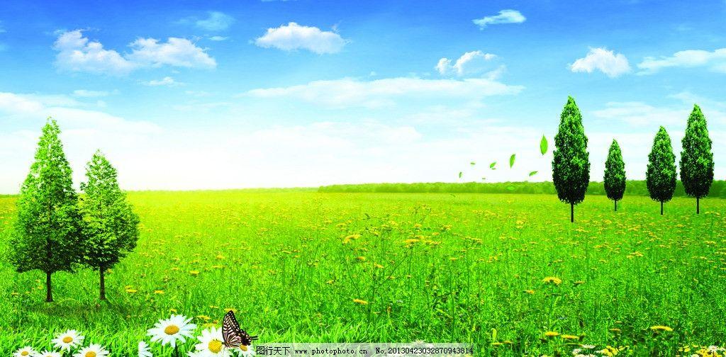 自然风景 草原背景图 蓝天 白云 草原 草地 树木 鲜花 蝴蝶 绿色环保