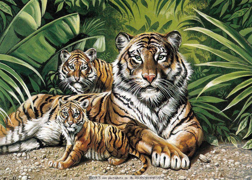 动物油画 老虎图片