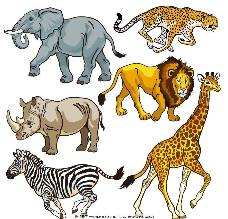 花豹 金钱豹 犀牛 狮子 斑马 长颈鹿 卡通 动物 野生 手绘 矢量 动物