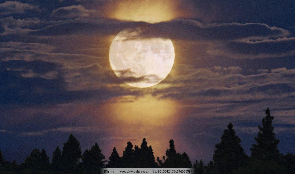 月光 夜晚 夜景 天空 日落 森林 自然风景 自然景观 摄影