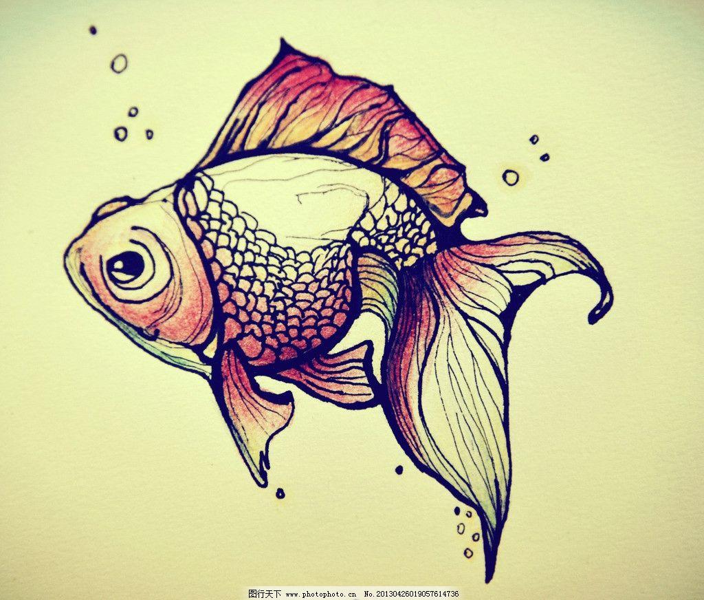 手绘金鱼 彩铅 手绘 金鱼