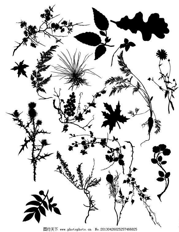 植物 树叶 树枝 剪影 黑白 叶子 树木树叶 生物世界 矢量 ai