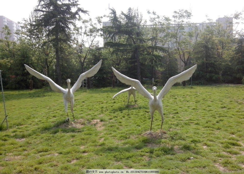 雕塑的白鹤 草地 草丛 野草 小草 植物 雕塑 雕刻 白鹤 鹤 建筑园林