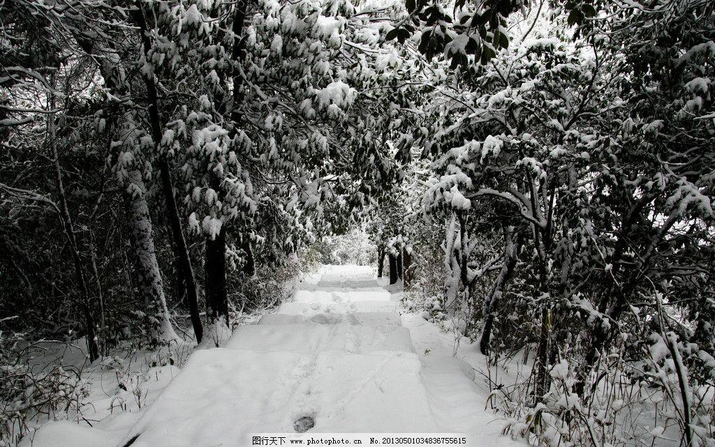雪景 天空 山 森林 小径 通道 脚印 雪天 山中雪景 积雪 雪地