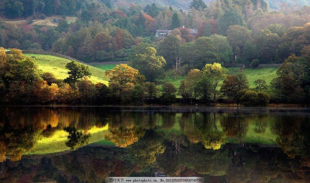 湖泊 草地 森林图片