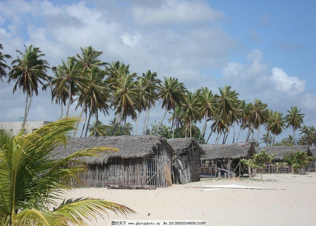 海边渔村 自然风景 椰子树 小木屋 蓝天 白云 沙滩 自然景观 摄影 72