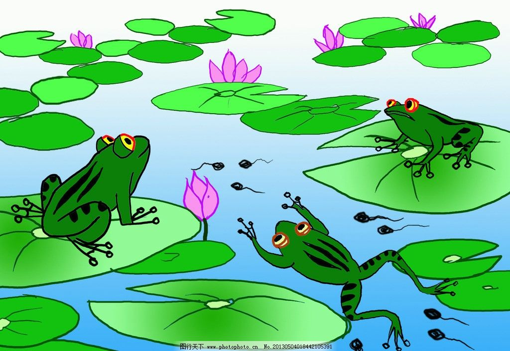 小蝌蚪 青蛙