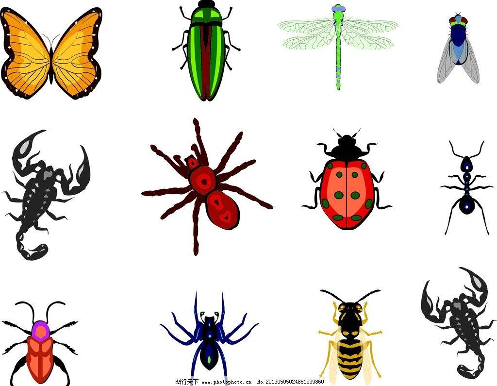 昆虫 蝴蝶 蝎子 蜻蜓 动物 可爱虫子 矢量