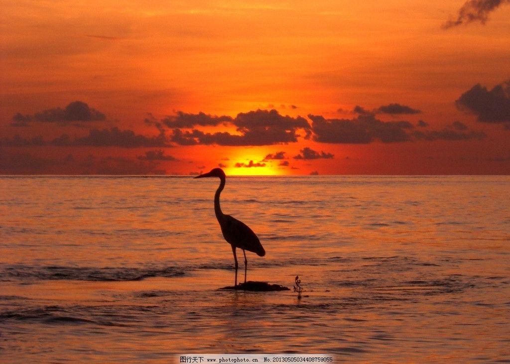海边日落图片