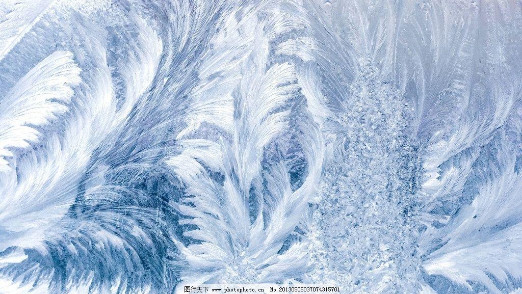 窗花 冬天 玻璃 花纹 漂亮 结冰 寒冷 花朵 叶子 生活素材