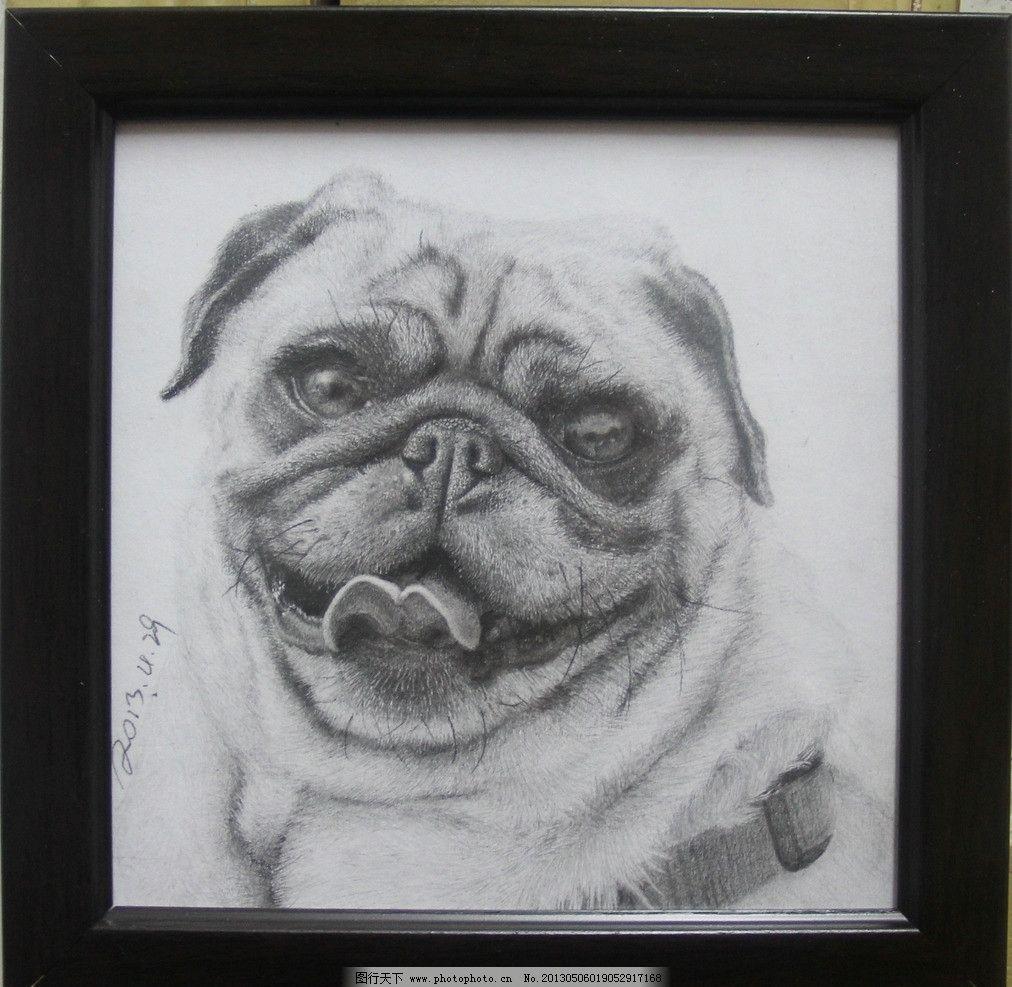 超写实狗狗素描 狗狗 超写实素描 素描 黑白 动物素描图片 绘画书法