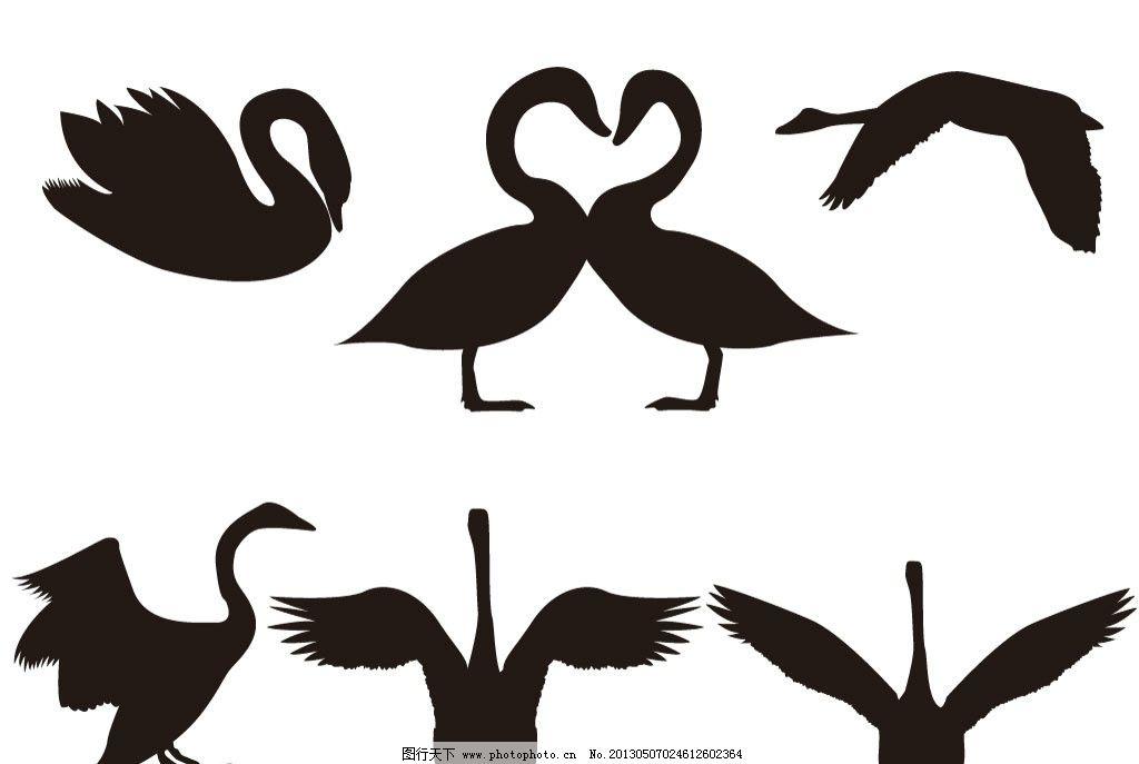 天鹅 鹅 天鹅剪影 白天鹅 小鸟 鸟剪影 动物剪影 飞行动物剪影 鸟