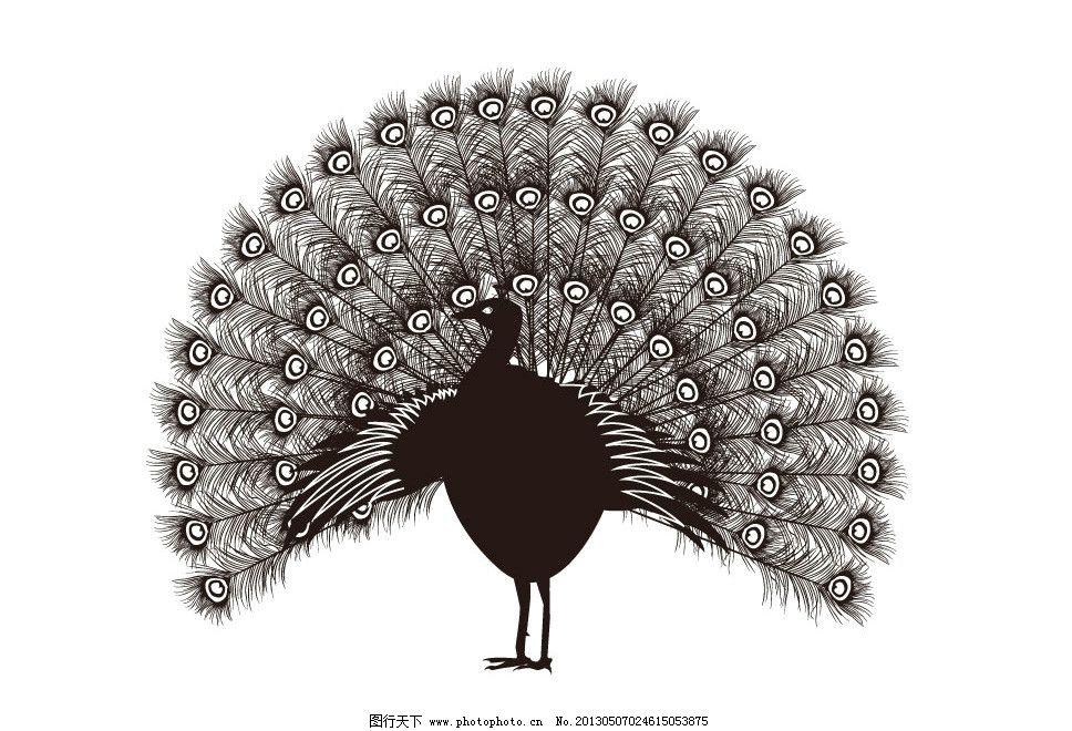 孔雀剪影 孔雀开屏 开屏 小鸟 鸟剪影 动物剪影 飞行动物剪影 鸟 孔雀