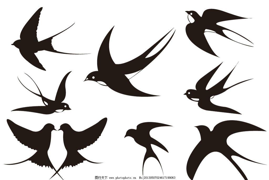 燕子 家燕 鸟 小鸟 鸟类 野生动物 飞行动物 飞禽 春天 春天到了