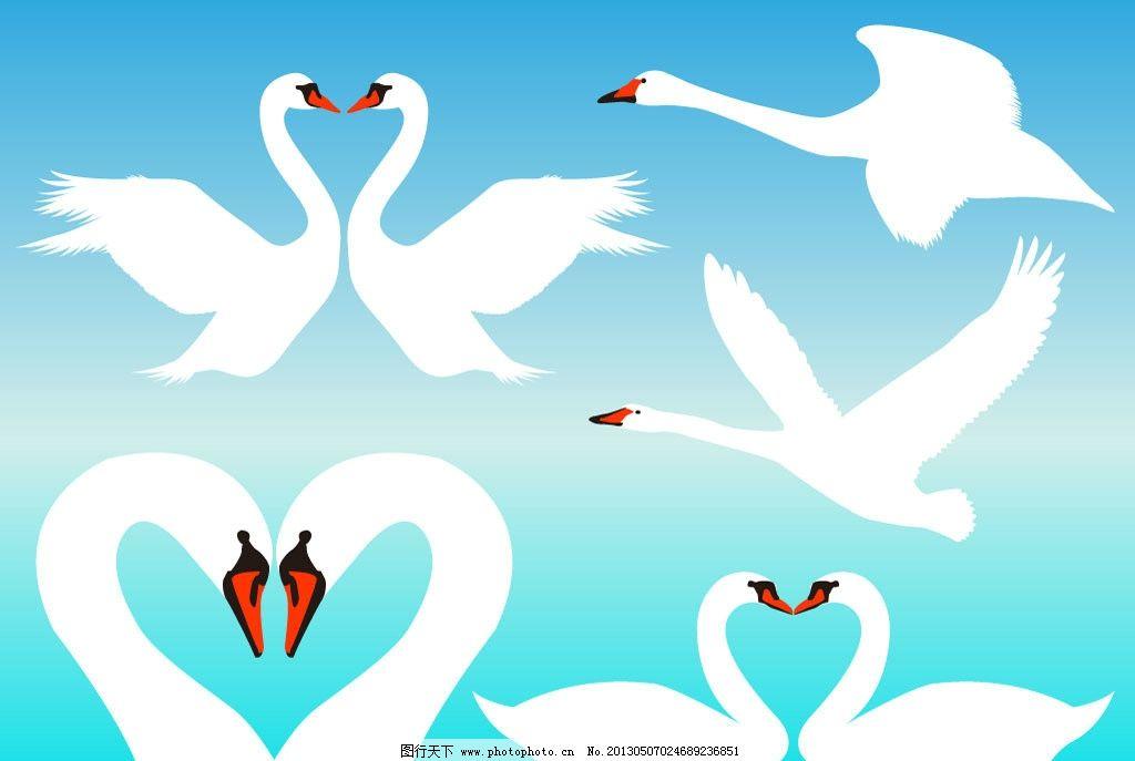 鹅 白天鹅 小鸟 鸟剪影 动物剪影飞行动物剪影 鸟 鸟类 生物世界 矢量