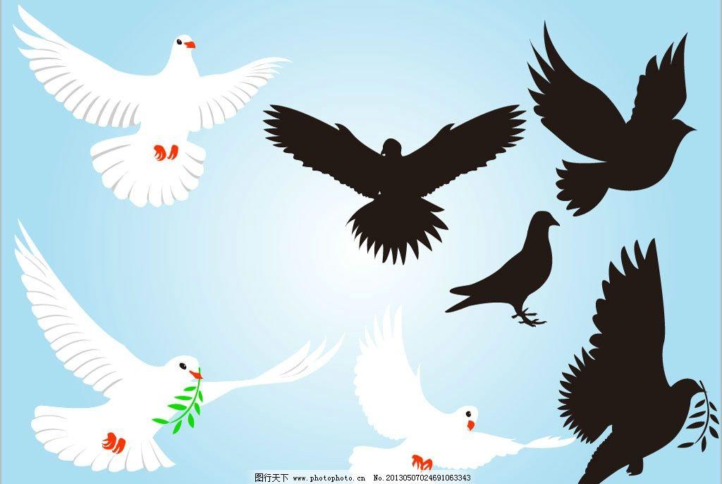 小鸽子 和平鸽 飞翔的白鸽子 鸟 小鸟 飞翔 鸟类 野生动物 飞行动物