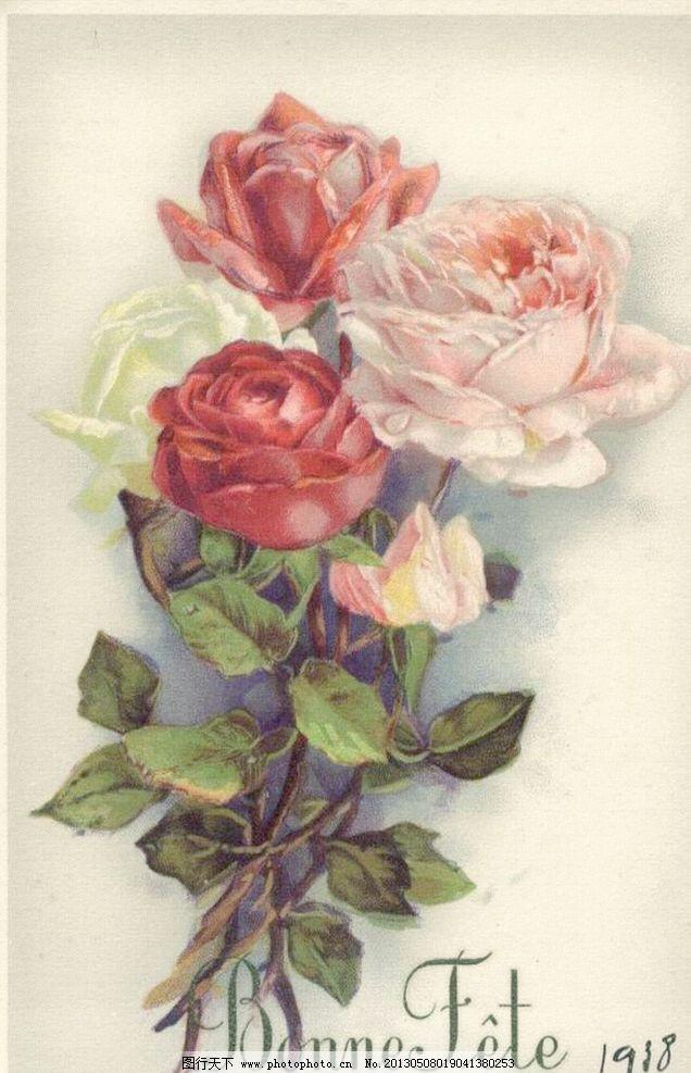 玫瑰花模板下载 玫瑰花