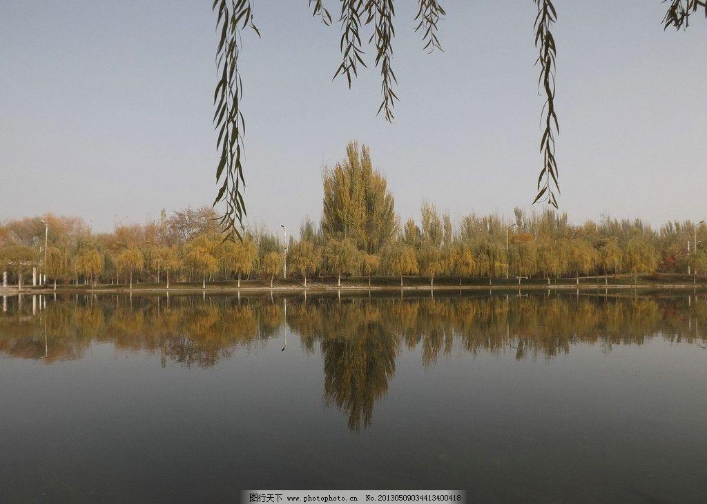 新疆 塔克拉玛干 沙漠 小城 胡杨 塔里木河 山水风景 自然景观 摄影