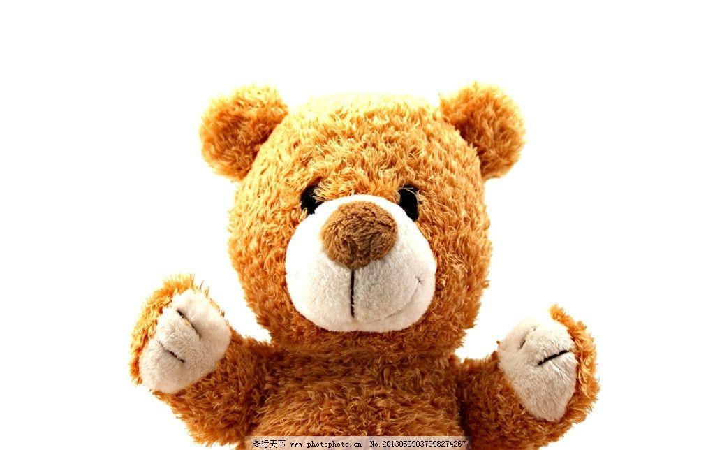 泰迪熊 泰迪 玩具 毛绒玩具 可爱 生活素材 生活百科 摄影 72dpi jpg