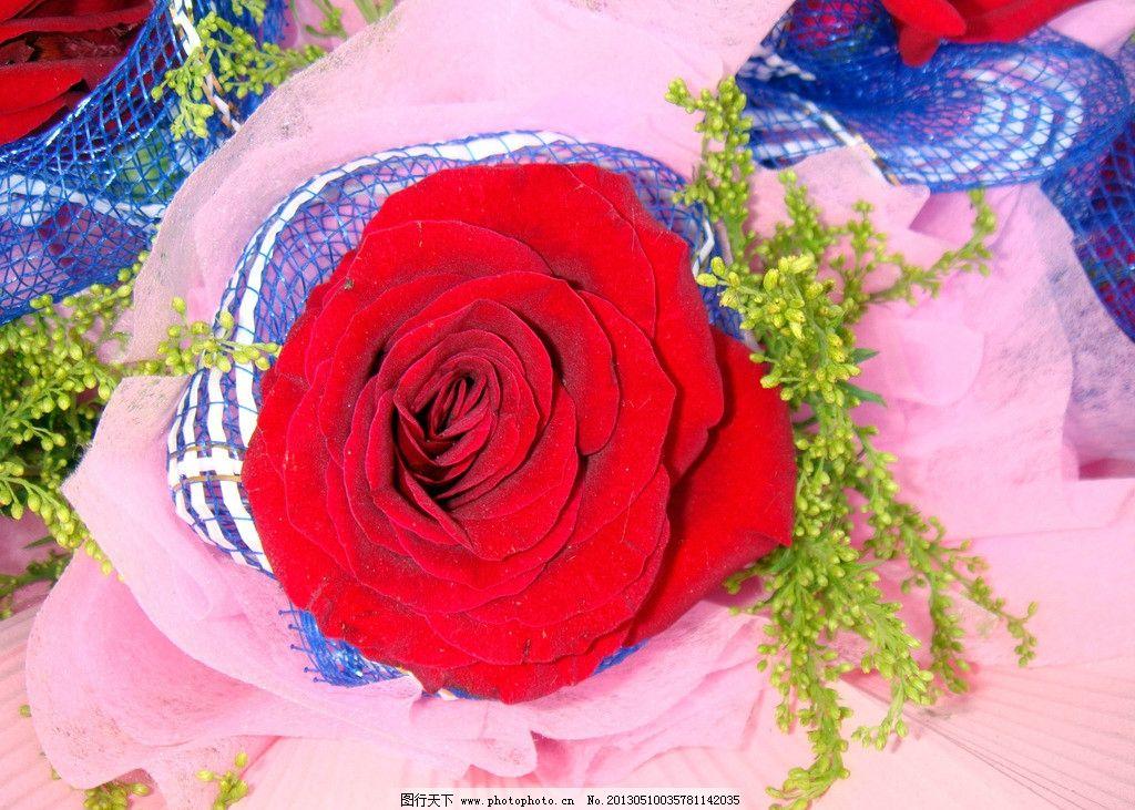 玫瑰花 红色花 礼品鲜花 绿叶 黄色 满天星 蓝色网包装 粉红外包装