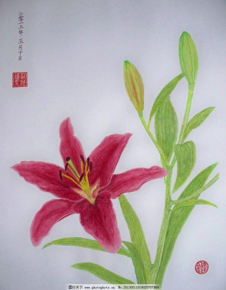 百合花水粉画 百合花 国画 水粉画 植物 花卉 绘画书法 文化艺术 设计