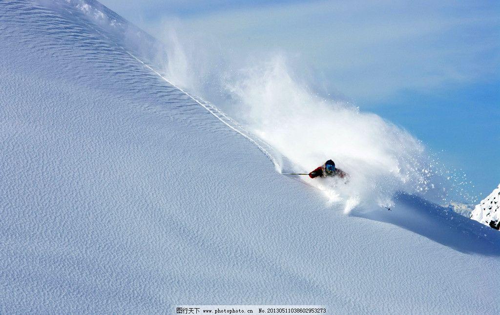 动物滑雪gif