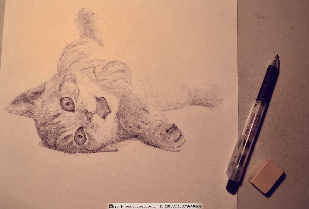 猫科动物 圆珠笔画 圆珠笔 橡皮擦 画 小猫 猫 可爱的小猫 猫眼 纸张