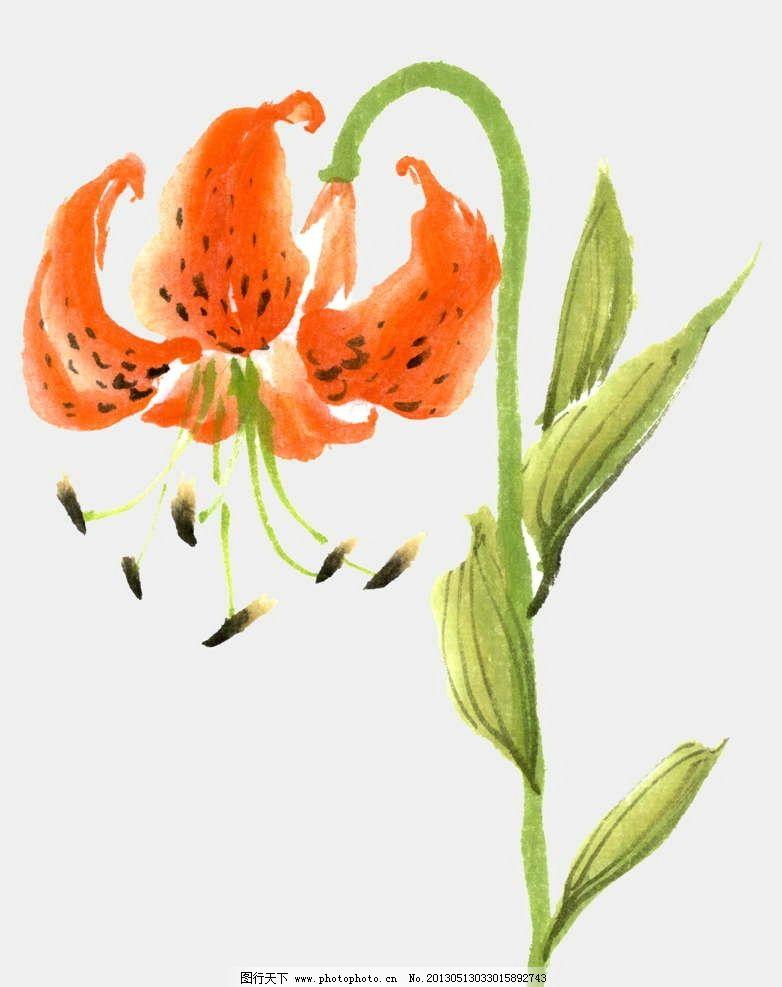 花朵 花瓣 繁花 百花盛开 盛开鲜花 鲜花盛开 手绘 漫画 彩绘 水彩画